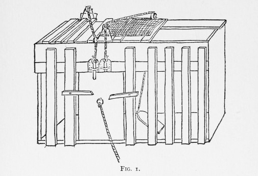 Thorndike's puzzle box. From 'Animal Intelligence: Experimental Studies' (1911).